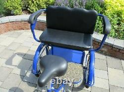 Trekidoo Adult Tricycle + Double Child Seat Ltd edition Blue Excellent Condition