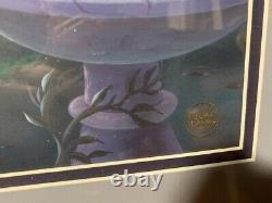 Cendrillon Réflexion Disney Édition Limitée Cel #64/500 Nouveau État